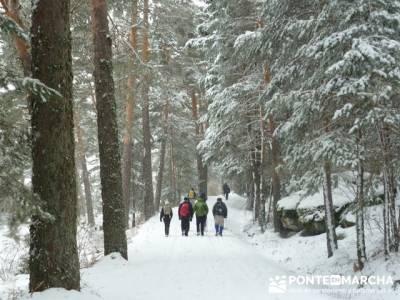 Ruta arroyo de la Chorranca; iniciacion al senderismo; rutas de senderismo en la pedriza
